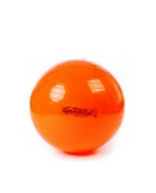PILATES BALON PEZZI BALL