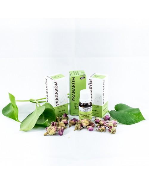 ACEITE ESENCIAL  WINTERGREEN (GAULTERIA) 10 ml PRANAROM